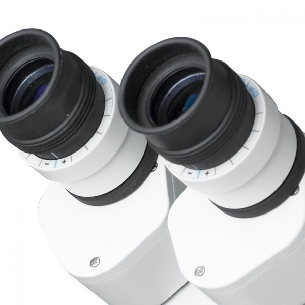 op-dent-binoculares